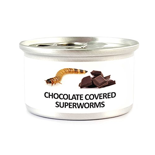ecoEat Chocolate Covered Superworms (Critters Crunchy)