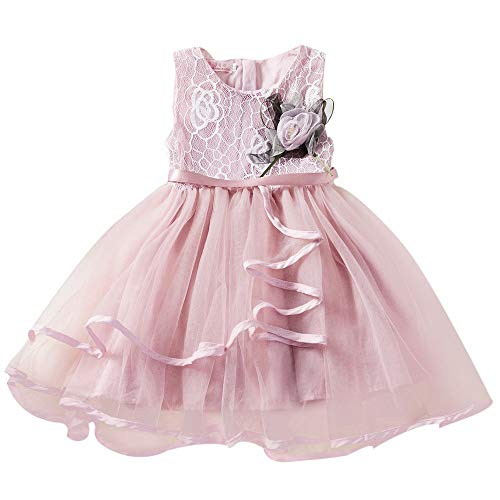 (Tutu Dresses Little Big Girls Puffy Tulle Sleeveless Flower Lace Performance Princess Gown (4-5 Years, Pink))