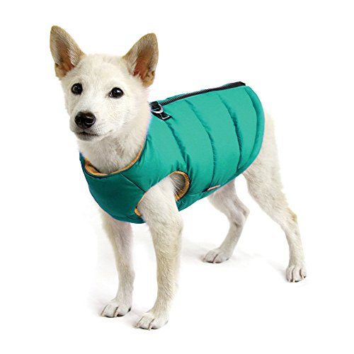 Gooby - Padded Vest Solid, Dog Jacket Coat Sweater Zipper Closure Leash Ring, Solid Turquoise, Medium