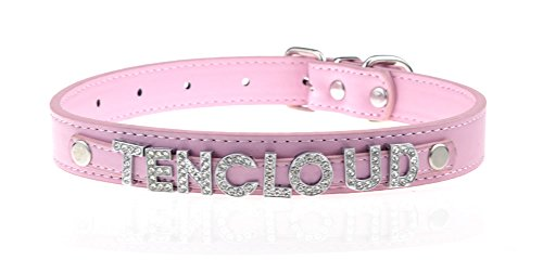 TenCloud Custom Dog Collar PU with Name Charms,Personalized Adjustable Leather Dog Collar for Small Medium Large Breeds 8''~17.7'' (L (13.7''~17.7'') x 4/5'', Pink)