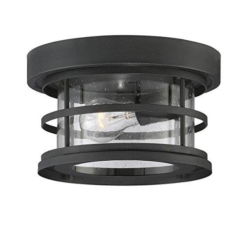 Savoy House Outdoor Ceiling Fan (Savoy House 5-369-10-BK Barrett 10