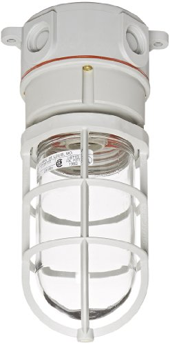 01 Ceiling Mount Adapter (Hubbell Wiring Systems NVX15GHGA Ceiling Mount Non-Metallic Vapor-Tight Incandescent Lighting Fixture, Gray)