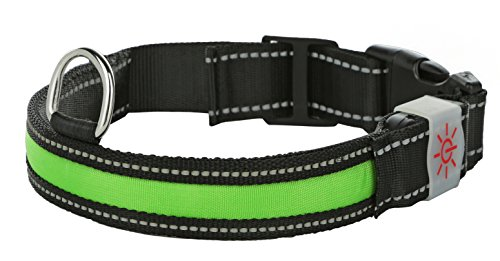 Moco Best Light Up Rechargeable LED Nylon Dog Collar With 3 Light Settings and Strong Buckle - Includes USB Charger - Keep Pet Safe And Visible (Large, 1 x 23.5 In, Green)
