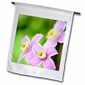 PS Flowers - Soft Pink Clematis Floral - Spring Flowers - 12 x 18 inch Garden Flag (fl_54505_1)