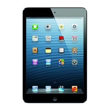 Apple iPad Mini MD528LL/A (16GB, Wi-Fi, Black & Slate)
