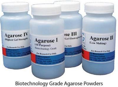 RC-005 - Agarose I (All Purpose agarose) - Agarose Powders, G-Biosciences - Each (25g) - Each