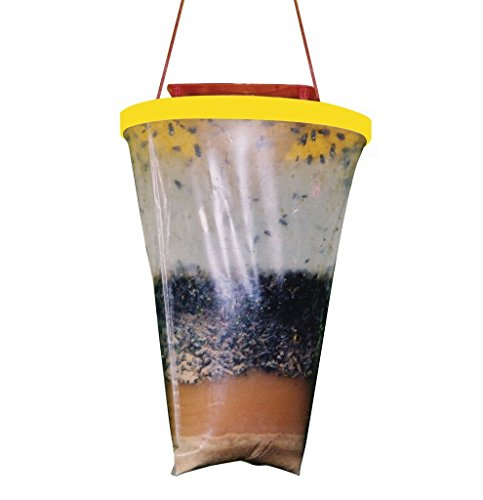None-Toxic Disposable Fly Trap