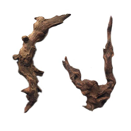 Reptile Toy,Driftwood Branches Reptiles Aquarium Decoration Assorted Size,Natural Habitat Decor Wood for Lizad (M 2pack)
