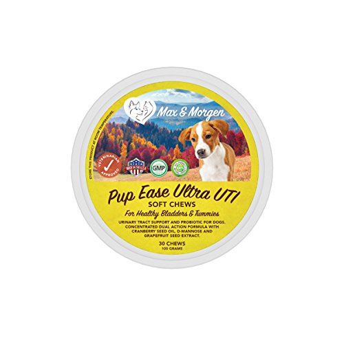 Cheapest Pup Ease Ultra UTI, Concentrated Cranberry, D-Mannose and Probiotic Soft Chews for Dogs, Maintains Urinary Tract Health, Supports Kidney and Bladder Function, Treats UTIs, Save Money on Vet Bills. Check this out.