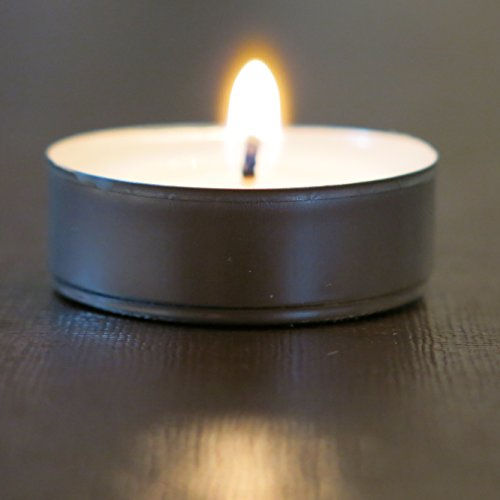 Unscented Palm Votives (200 Unscented Paraffin-Free Natural Tealights White By CandleNScent)