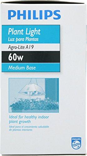 Phillips 429480 A19 60-Watt Medium Base Incandescent E26 120 Volt Agro-Lite Indoor Light Bulb for Plants