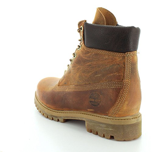 Timberland Annvrsry AF Uomo Oiled Stivali Org 6 Orange Burnt Worn in PwpqPr