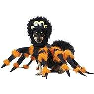 California Costumes Collections PET20149 Spider Pup Dog Costume, Medium