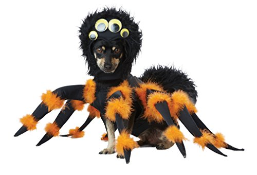Black Pug Spider Costume (California Costumes Spider Pup Dog Costumes, Pet, Black/Orange,)