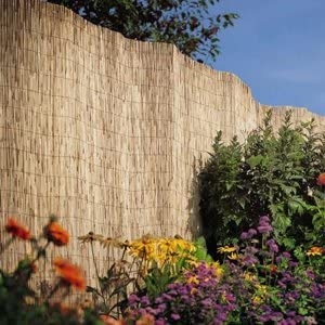 1.5 x 4M Ideal for screening walls and fences New Fantastic Garden Reed Fencing