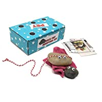 Rock Pet Adoption Kit with Googly Eyes and Dolly