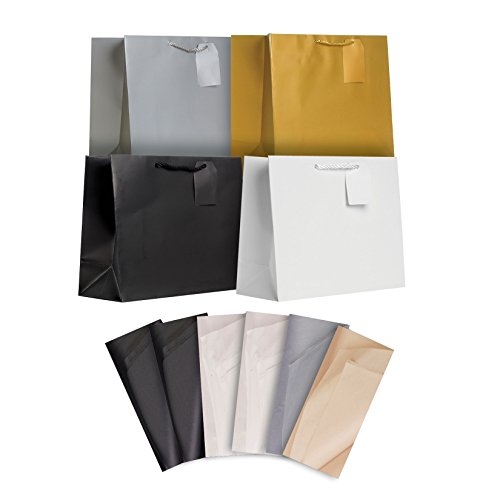 Jillson Roberts All-Occasion Large Gift Bags and Tissue in Assorted Solid Colors, 6-Count, Elegant Basics (STLT002)