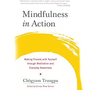 Mindfulness in Action Hörbuch