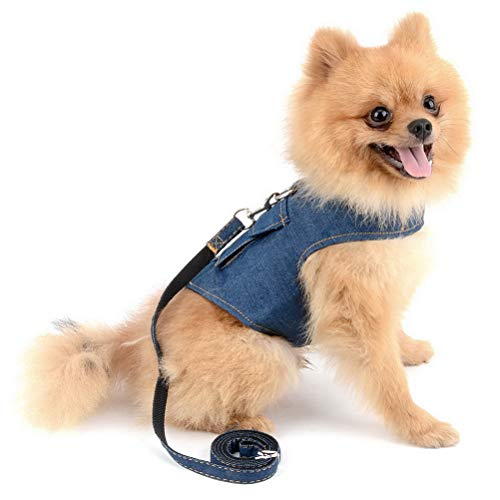 Zunea Denim Harness for Small Dogs Leash Set Step-in Adjustable Durable Jean Jacket Vest Harness with D-Ring No Pull Lead for Pet Puppy Cat Walking Blue S