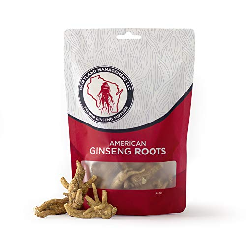 Authentic American Ginseng Whole Root 西洋参 (Non-GMO, Gluten Free Herb) Wisconsin Grown, Hand Selected! (4 oz)