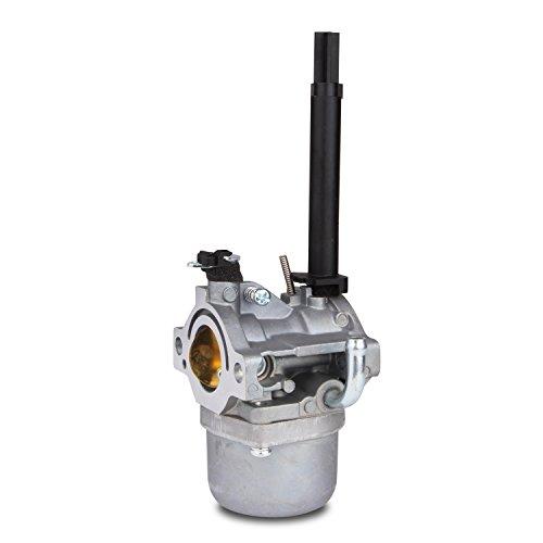 Briggs & Stratton Carburetor Carb Perfect Replacement, Carburetor for Briggs & Stratton 591378 796321 696132 696133 796322 by fancyU