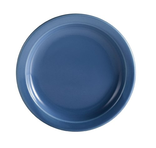 light blue dinner plates - 9