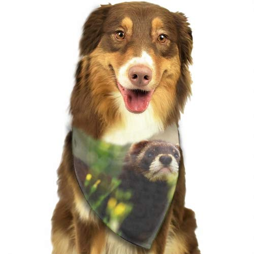 USTON Classic Pet Dog Bandanas Proud Ferrets Washable Triangle Plaid Adjustable Dog Scarf Bow Tiess