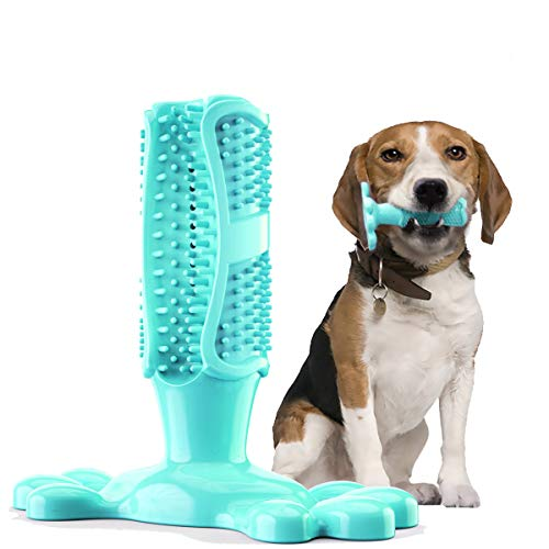 Fansun Dog Toothbrush Chew Toy – Dog Teeth Cleaning Toys for Medium Dog – Dog Brushing Stick Teeth Cleaner – Non-Toxic Natural Rubber Bite Resistant, 2 Bonus Cleaning Brush,Blue