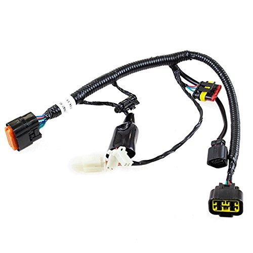 EFI Wiring Loom (SWCBL003):