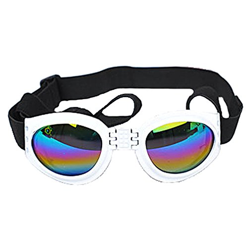 OpetHome Plastic Wind-Resistant Radiation Protection Glasses Fashion Pet Glasses - Smith Sunglasses Agent