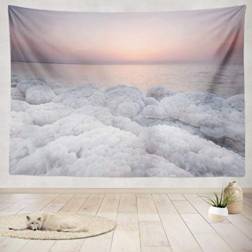 ASOCO Tapestry Wall Handing Rock Covered with Salt On Coast of Dead Sea Jordan in Sunset Wall Tapestry for Bedroom Living Room Tablecloth Dorm 60X60 Inches (Best Beaches In Jordan)