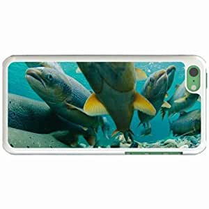 Custom Fashion Design Apple iPhone 5C Back Cover Case Personalized Customized Diy Gifts In Atlantic salmon White