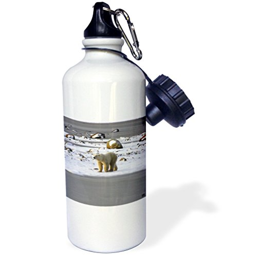 polar bear bottle - 8