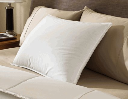 Encompass Group ® 50/50 White Duck Feather and Down Pillow - Queen Size