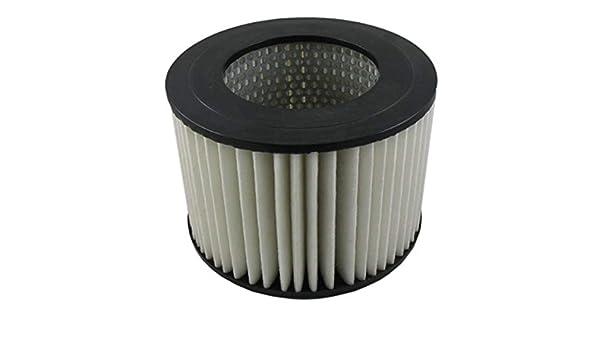 Air Filter Pentius PAB3688
