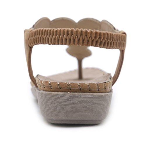 Cachi da Piatti Modello KUONUO Infradito Sandali Conchiglia Donna Decorazione con Estate da SXnPwPO5q