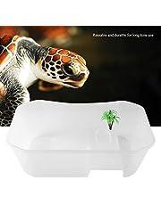 Open fish tank, tank, transparent reptile aquarium tank for home fpr ofiice