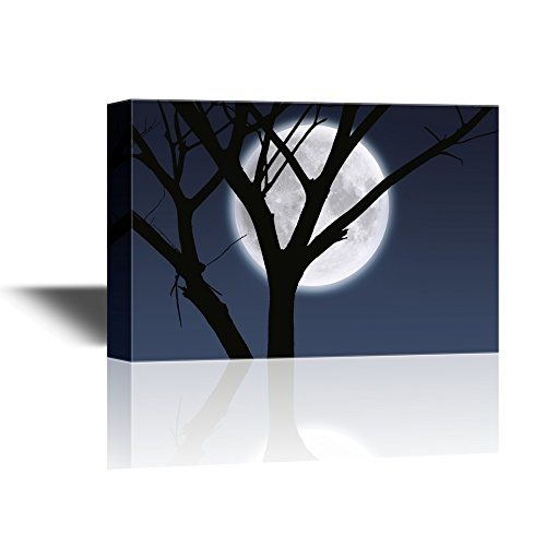 Moonlight Shadow and Black Tree Branches Gallery