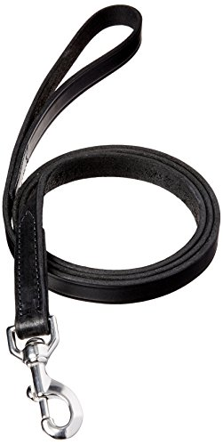(Perri's Plain Leather Dog Leash, Black, 3/4-Inch x)