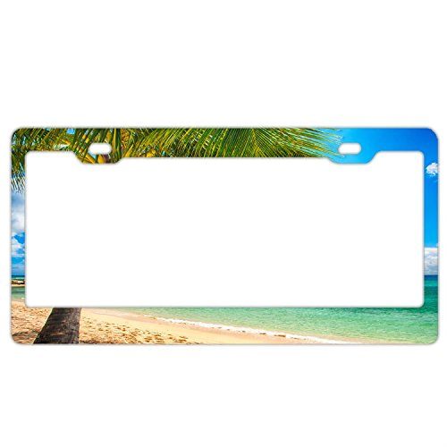 - Custom License Plate Frames Beach Palm,Premium Quality Stainless Steel License Plate Covers for US Vehicles