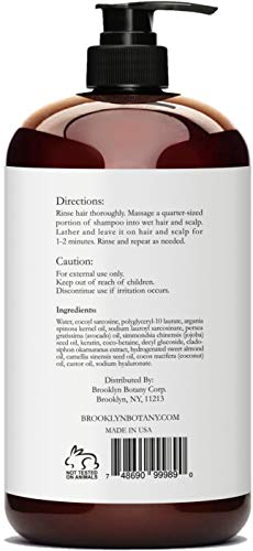 Moroccan Argan Oil Shampoo 16 fl oz - Sulfate Free - Volumizing & Moisturizing, Gentle on Curly & Color Treated Hair, Daily Use for Men & Women - Infused with Keratin - Brooklyn Botany