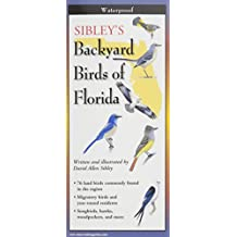 Sibley's Back. Birds of Florida