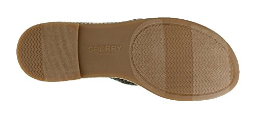 Sperry Top-Sider Womens Anchor Coy (Boxed) Flat Sandal Olive