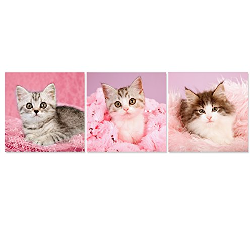 Hello Lovely Kitty Modern Canvas Art Print Cute Pet Kitten Paintings Pink Cat Animal Picture On Canvas 3 Panels Giclee Artwork Daughter Birthday Gift For Kids Room Wall Decor  Framed 12X12inchx3pcs
