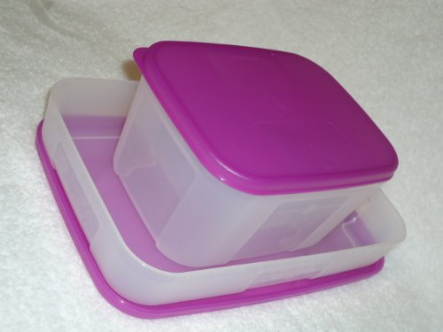 Tupperware Freezer Mates Set of 2 Containers Purple Seal