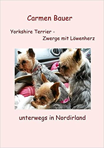 Yorkshire Terrier - Zwerge Mit Lowenherz Unterwegs in Nordirland
