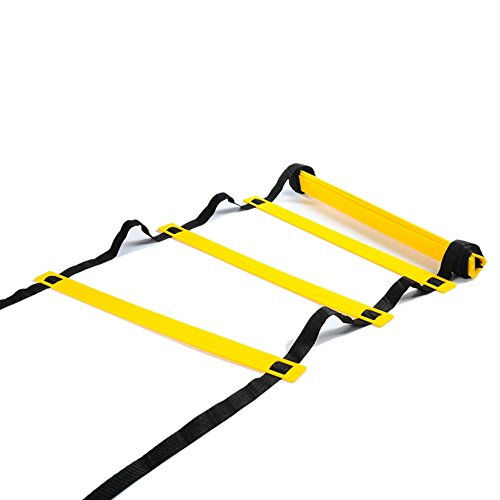Physport Speed Ladder Soccer Training Agility Ladder with Carry Case Sport Tool (12-Rung)