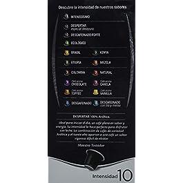 Café FORTALEZA – Cápsulas de Café Despertar Compatibles con Nespresso – Pack 24 x 10 – Total: 240 Cápsulas