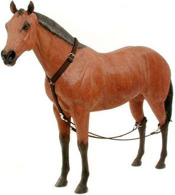 688499114448 - Tough-1 Economy Nylon Breeding Hobbles carousel main 0