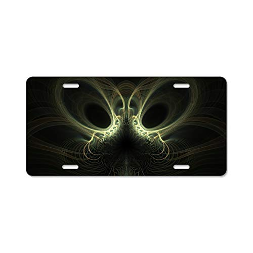 Khope Abstract Artistic Car License Plates Frames, Novelty Plate Covers, Unbreakable Frame,Screws Included